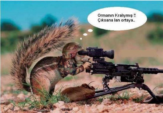 çOoOk KoMiK BeBekLeR Ve Komİk HayvaNlar Alemİ :)